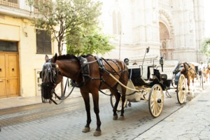 Horse-drawn cart in Palma de Mallorca