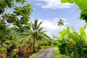 Tahiti island interior