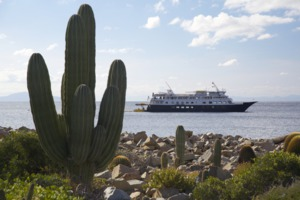 Un-Cruise Adventures in the Sea of Cortez