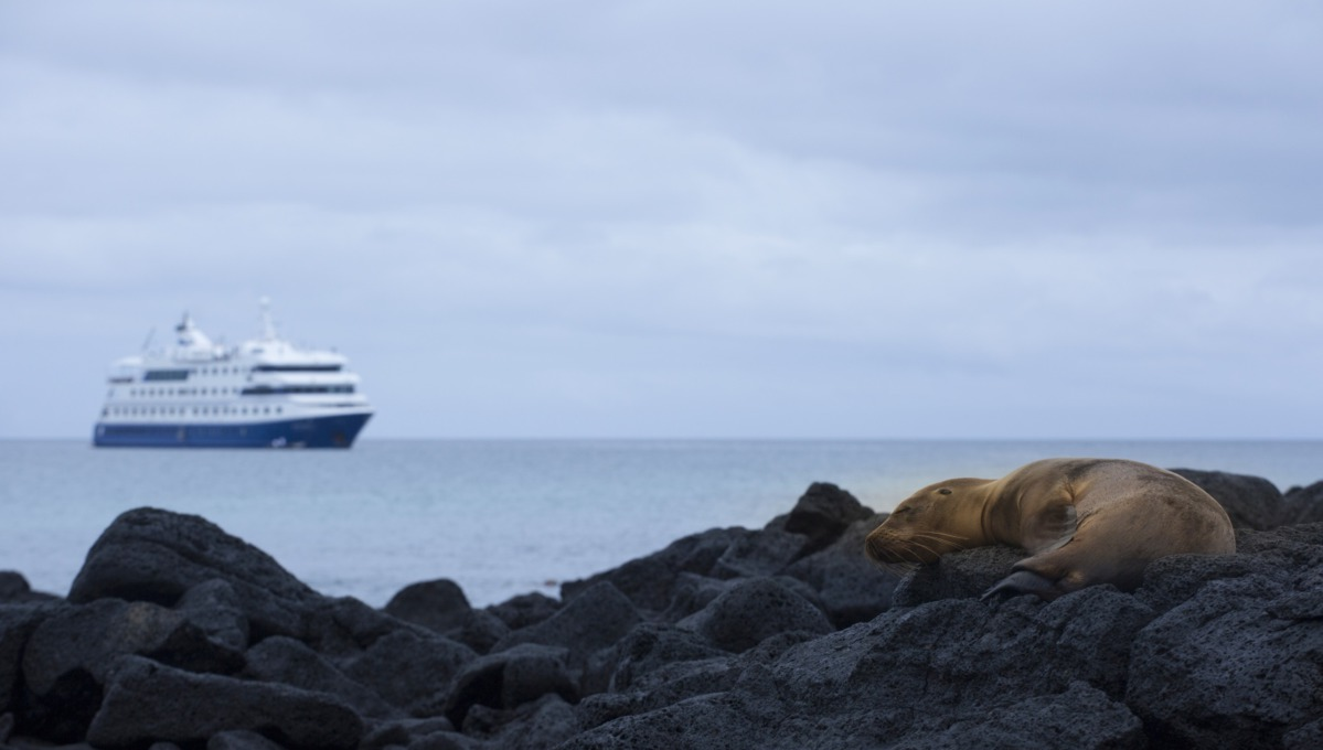 Metropolitan Touring - Galapagos expedition cruises