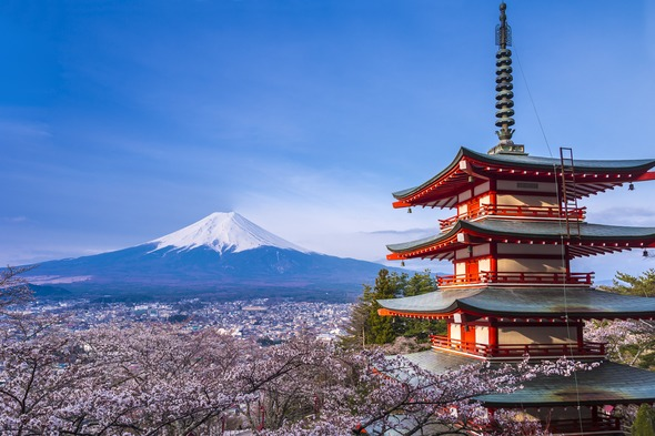 Mount Fuji and cherry blossom, Japan