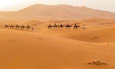 Dunes near Merzouga, Morocco