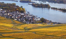 Rudesheim, Rhine Valley, Germany