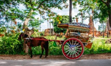 Horse carriage in Inwa, Myanmar