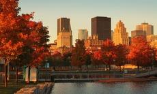Fall colours in Montréal, Canada