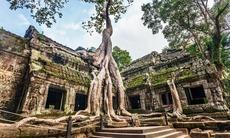 Ta Prohm temple near Siem Reap, Cambodia
