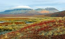 Chukchi Peninsula, Russia