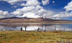 Chungará Lake, Arica, Chile