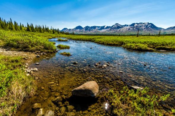 Creek near Denali Highway, Alaska