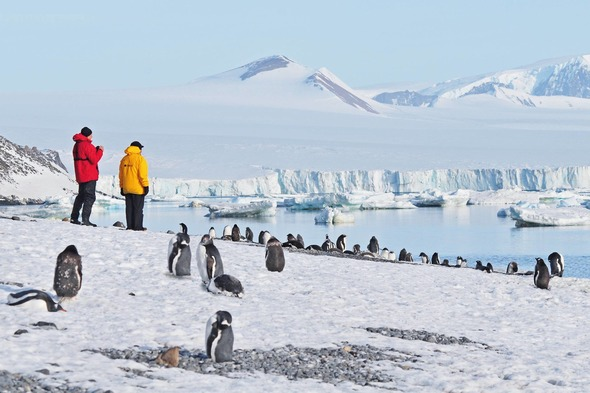 Antarctica expedition cruising guide - Going ashore with Hapag-Lloyd