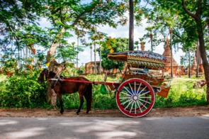 Horse carriage in Inwa, Myanmar