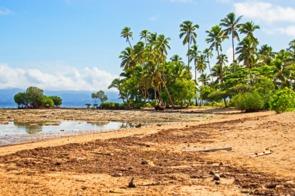 Beach on Vanua Levu, Fiji
