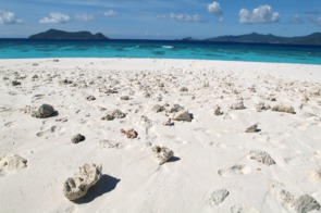 White sand beach on Mayotte island