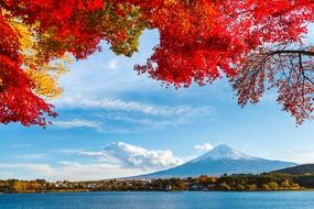 Japan expedition cruises - Mount Fuji in autumn