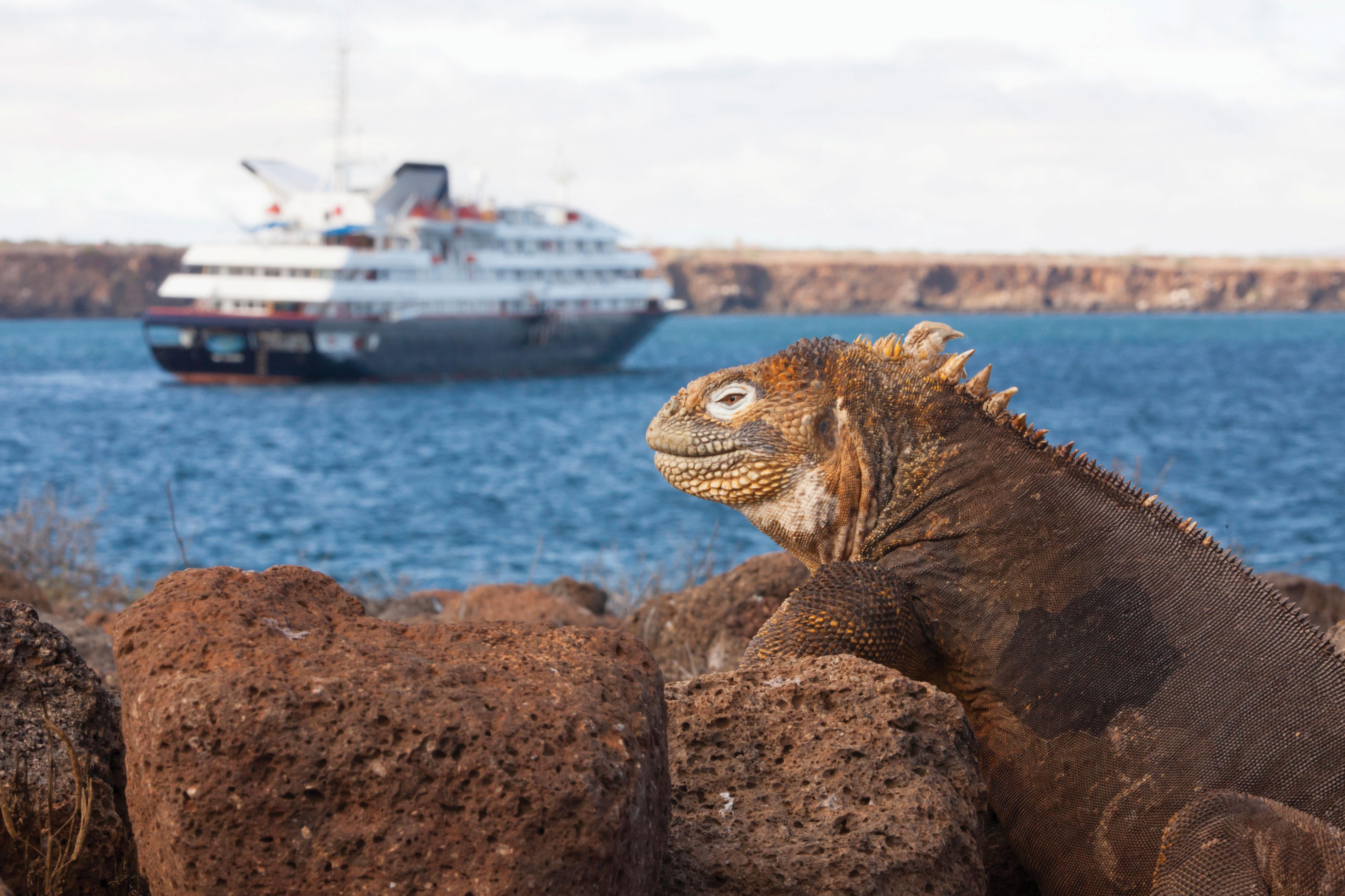 Silversea - Silver Galapagos