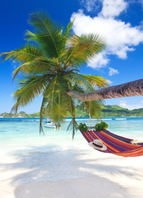 Seychelles Mahe Beach with hammock