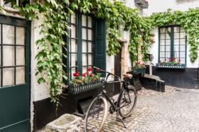 Back alley in Antwerp