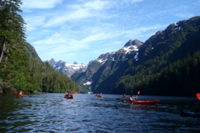 Un-Cruise Adventures - Kayaking in Alaska